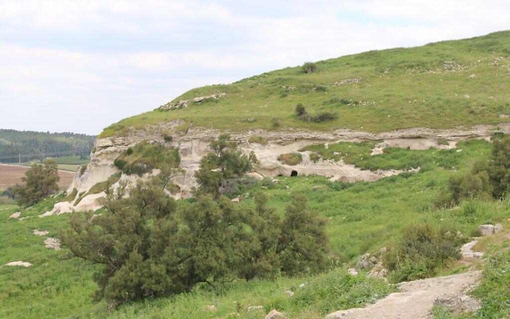 הנוף בתל צפית (צילום: שמואל בר-עם)
