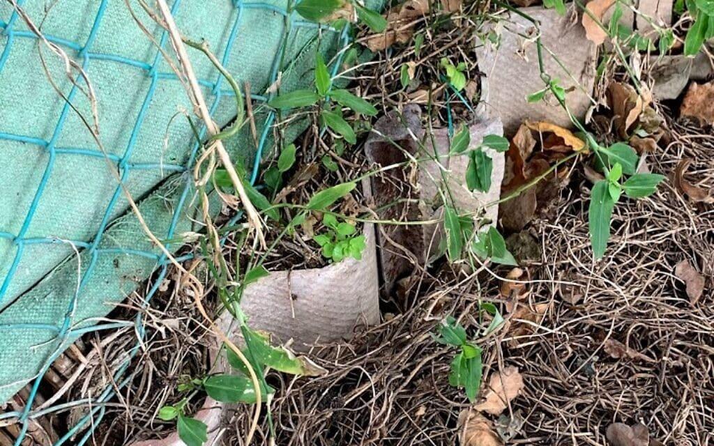 שברי אסבסט חשופים בשביל הכלנית בנהריה