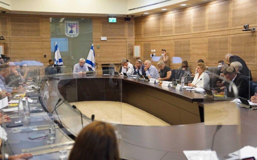 ישיבה של ועדת החוץ והביטחון של הכנסת, 5 במאי 2021 (צילום: דני שם טוב, דוברות הכנסת)