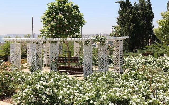 הגינה הצרפתית בגן וואהל לוורדים בירושלים, אפריל 2021 (צילום: שמואל בר-עם)