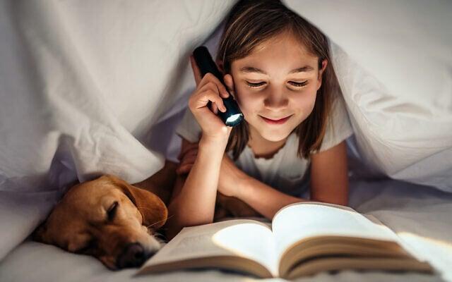 ילדה עם כלב, אילוסטרציה (צילום: Kerkez / iStock)