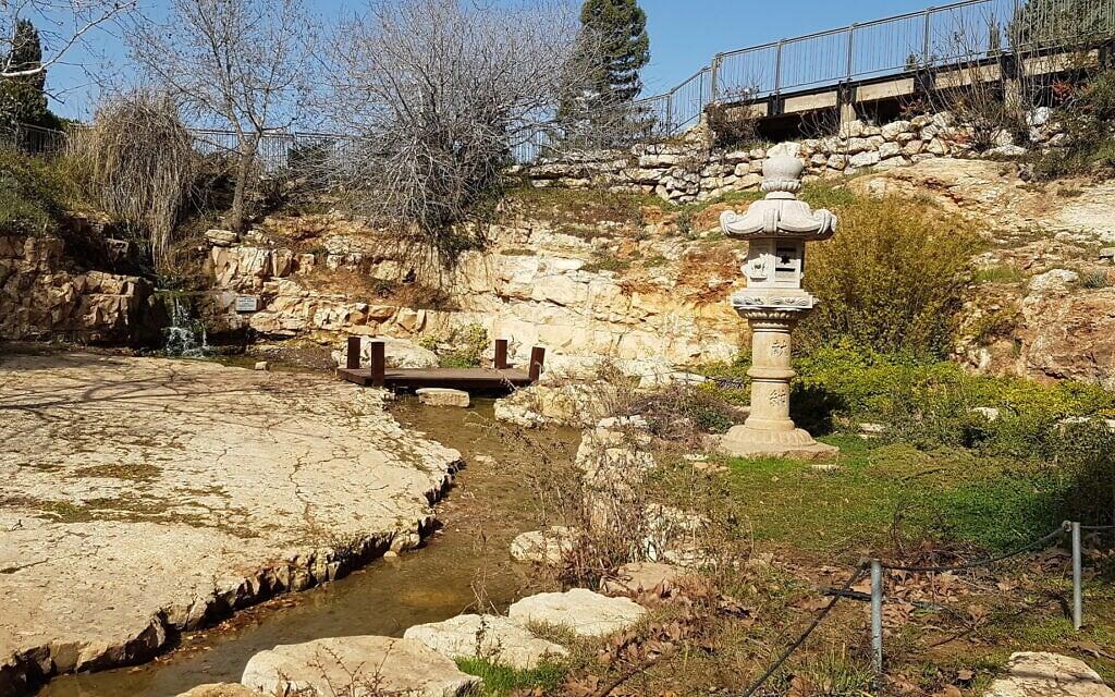 גינה יפנית בגן וואהל לוורדים בירושלים, אפריל 2021 (צילום: שמואל בר-עם)