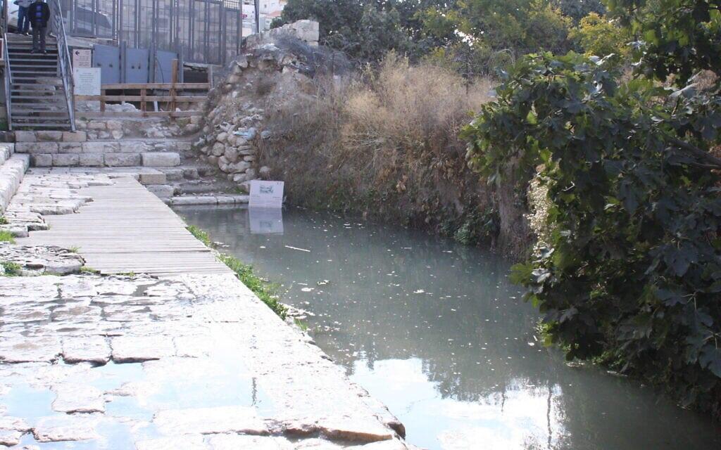 בריכת השילוח בעיר דוד (צילום: שמואל בר-עם)
