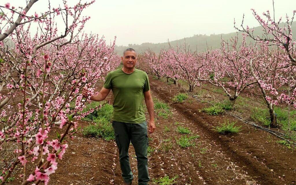 """ירון בלחסן, מנכ""""ל ארגון מגדלי הפירות בפריחת הנקטרינה (צילום: ארגון מגדלי הפירות בישראל)"""