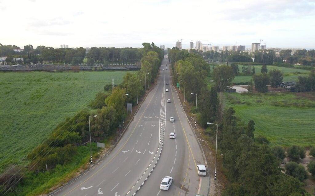 שדרת האקליפטוסים בכביש 8510 (צילום: מועצה אזורית מטה אשר)