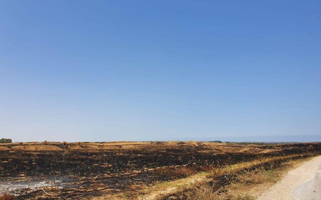בדרך לעוטף עזה להביא את רשיון הנהיגה (צילום: עופר צ'יזיק)