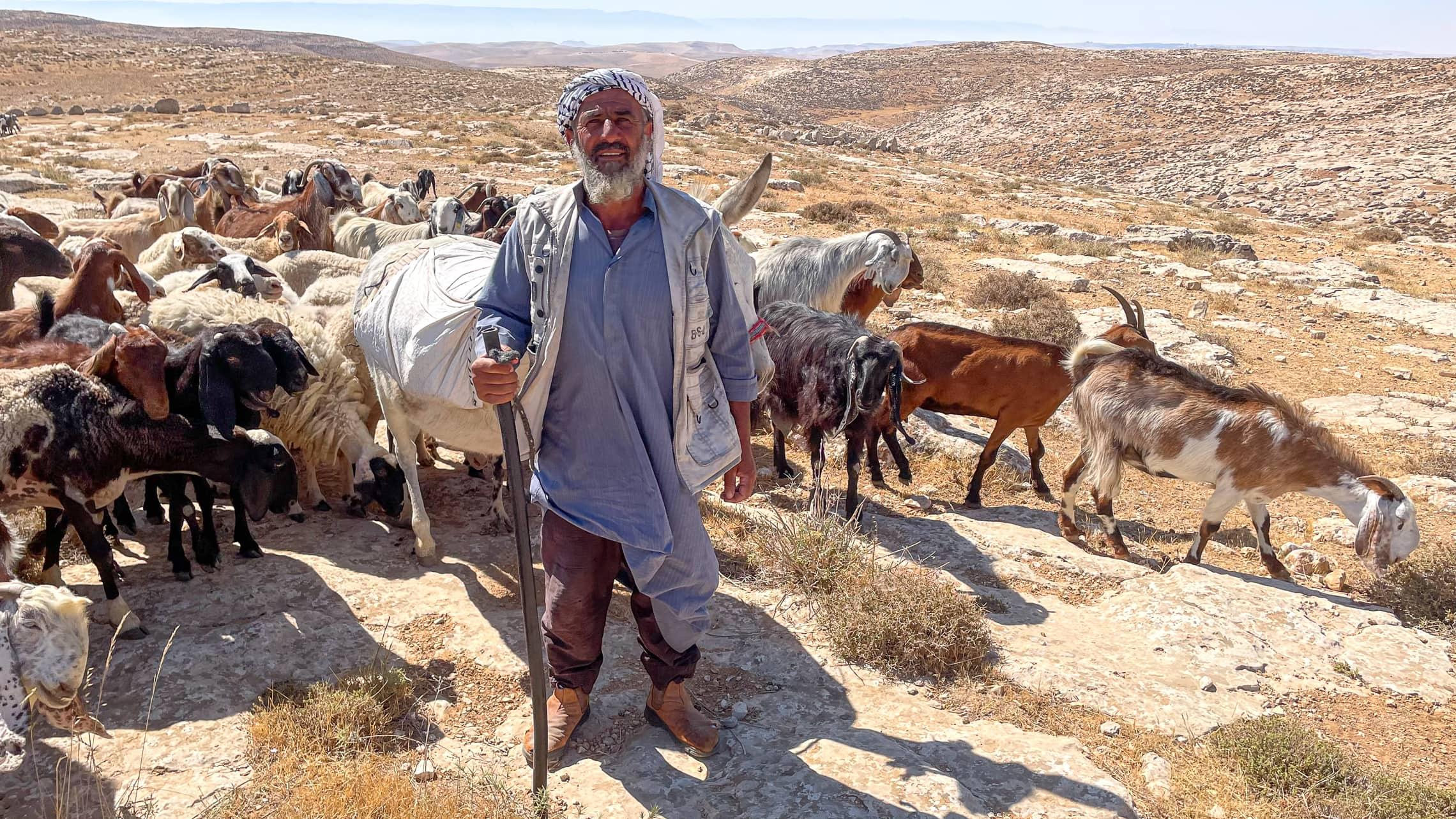 מחמוד חמאמדה ומרעה הצאן שלו (צילום: אמיר בן-דוד)