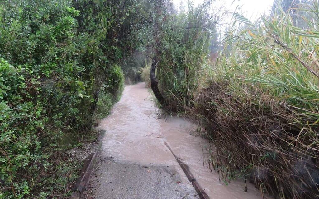 המסלול ההרוס בנחל השופט אחרי הסערה של 2020 (צילום: באדיבות עמותת לטם)