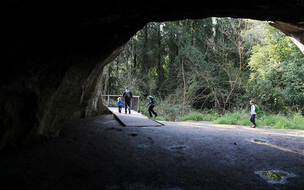 """הכניסה המונגשת למערה בנחל השופט לפני ההצפה ב-2020 (צילום: יעקב שקולניק, קק""""ל)"""