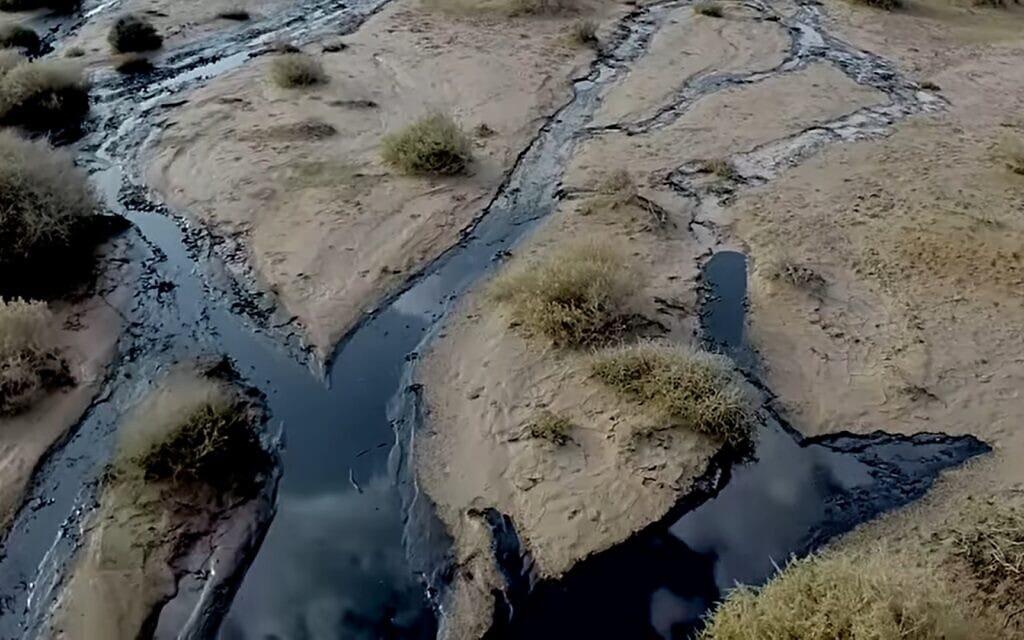 אסון הנפט בשמורת עברונה, 2014, צילום מסך מסרטון של רשות הטבע והגנים
