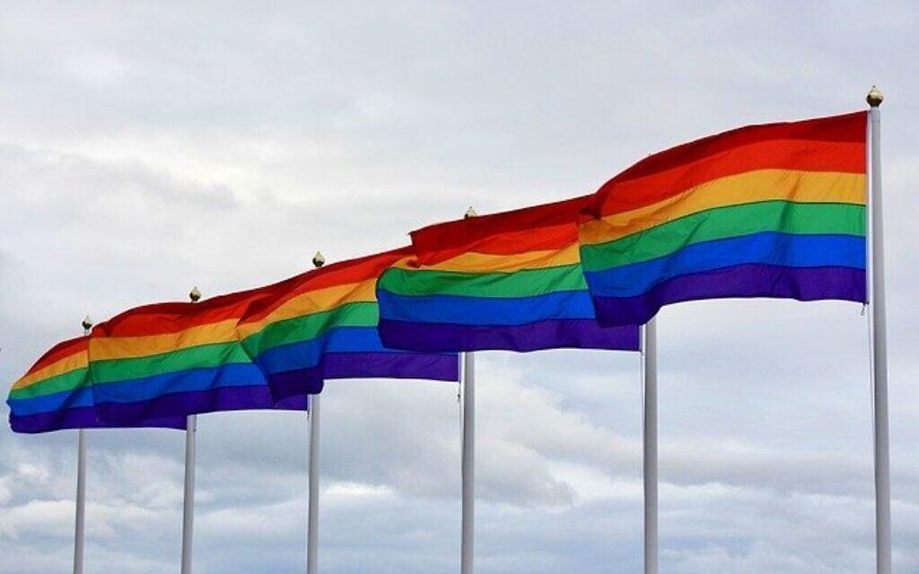 דגלי גאווה (צילום: Image by Filmbetrachter from Pixabay)