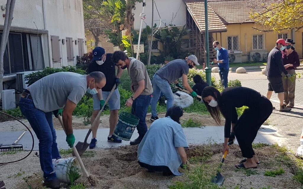 הקמת גן יער של עמותת ונטעת במוסד גריאטרי צהלון ביפו (צילום: ונטעת)