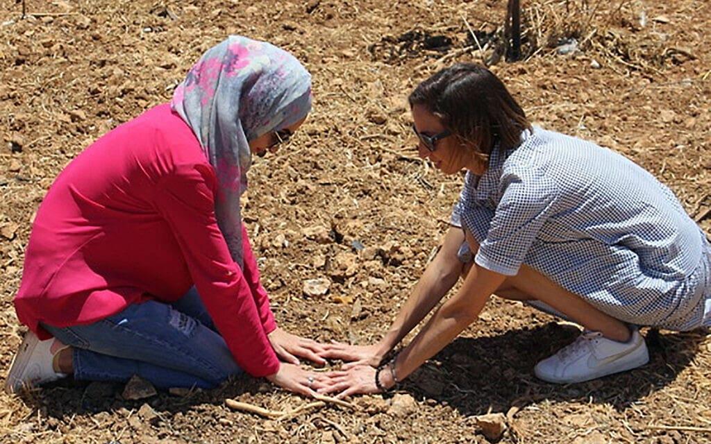 פלסטינית וישראלית בשורשים