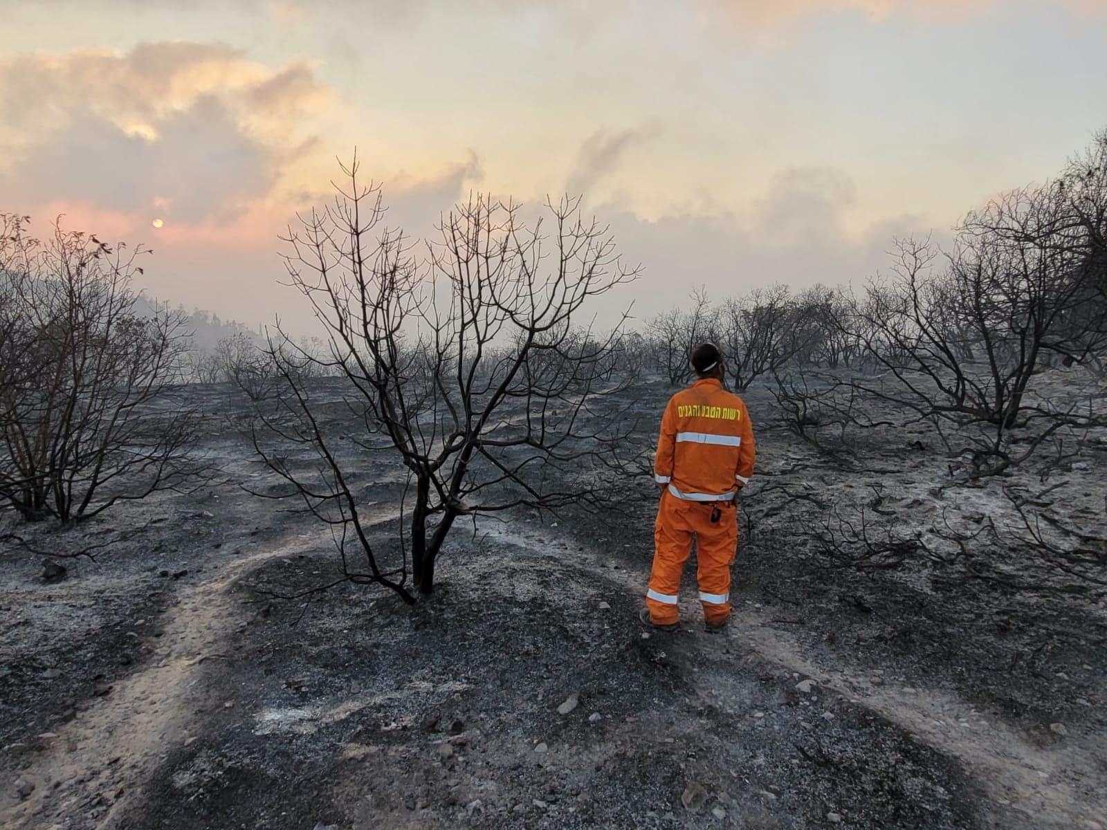 """שריפה בשמורת הר טייסים בהרי ירושלים, אוגוסט 2021 (צילום: גלעד וייל / רט""""ג)"""