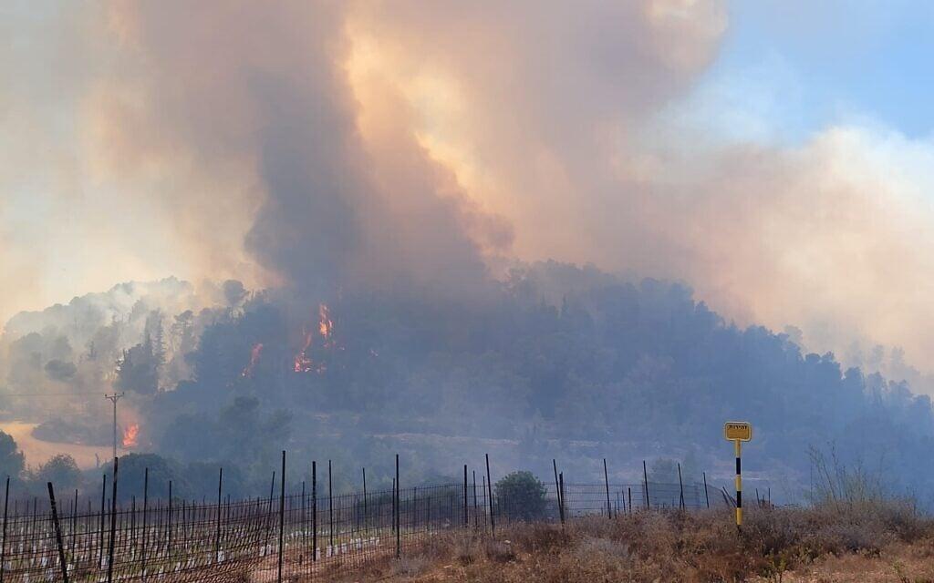 """שריפה בהרי ירושלים, אוגוסט 2021 (צילום: אריאל קדם / רט""""ג)"""