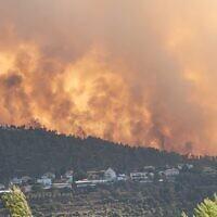 שרפה בהרי ירושלים, אוגוסט 2021 (צילום: אריאל קדם / רשות הטבע והגנים)