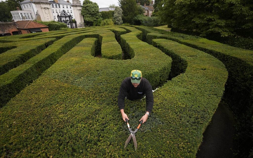 גנן הבית אנתוני בוב גוזם את הצמחייה במבוך של המפטון קורט, 30 ביולי 2021 (צילום: AP Photo/Matt Dunham)