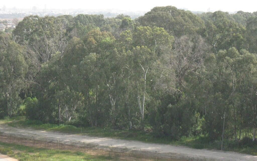 """גדר תוחמת את אזור תע""""ש השרון (צילום: עמותת ריב""""ה)"""