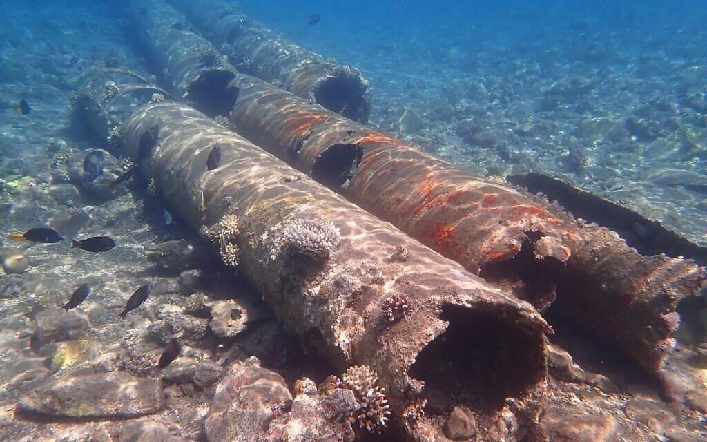 פסולת כבדה על קרקעית מפרץ אילת (צילום: עומרי עומסי, רשות הטבע והגנים)