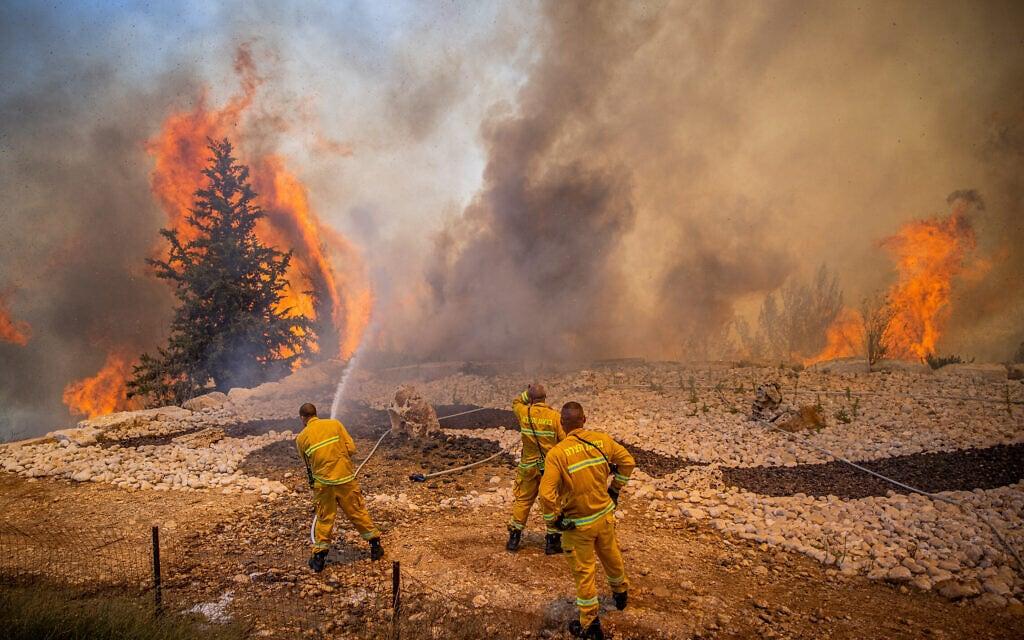 לוחמי אש במאמצים לכבות את השרפה ליד מושב שורש, אוגוסט 2021 (צילום: יונתן זינדל/פלאש90)