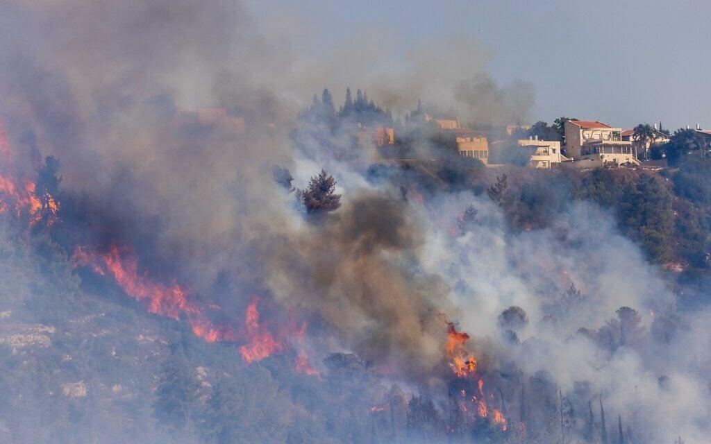 שרפת הענק בהרי ירושלים, ליד מושב גבעת יערים, 16 באוגוסט 2021 (צילום: יונתן זינדל/פלאש90)