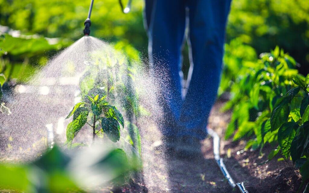 חקלאי מרסס חומרי הדברה. אילוסטרציה (צילום: iStock)