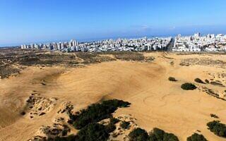 הדיונה הגדולה באשדוד (צילום: החברה להגנת הטבע)
