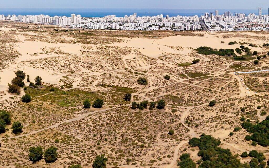 הדיונה הגדולה באשדוד (צילום: בועז רענן)