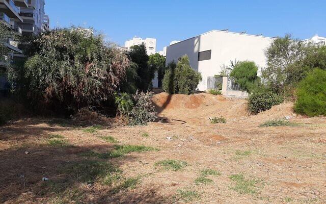 קרקע שמיועדת לבניית בית כנסת הוקצתה לקבוצת מתפללים שזוכה לתמיכת ועד השכונה