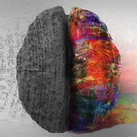 תבניות חשיבה, אילוסטרציה (צילום: Warrenrandalcarr /iStock)