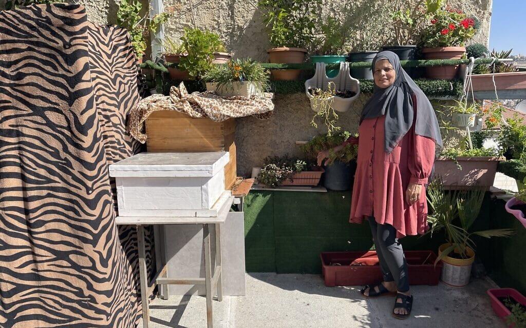זהייה אבו ארמיילה עם הכוורת שלה בשכונת אבו תור במזרח ירושלים (צילום: סו סורקיס)