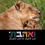Hertz Ifat