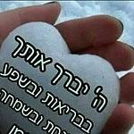 יהודה מור