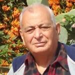 Shimon Shaul